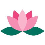 lotus 150